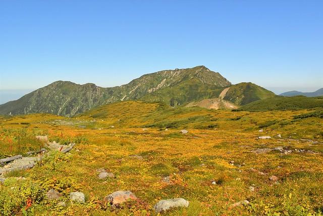 室堂から見る大日三山と草紅葉