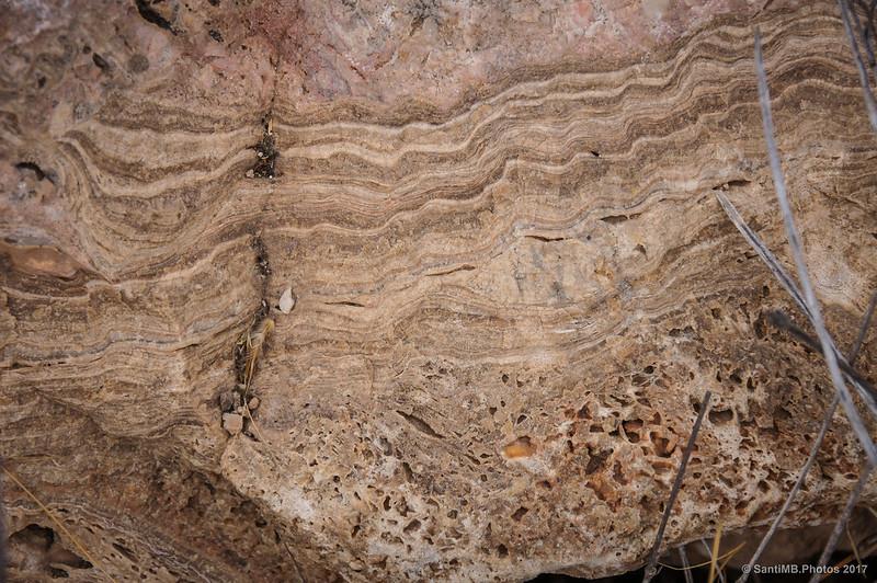 Texturas en una roca de Mesa Roldán