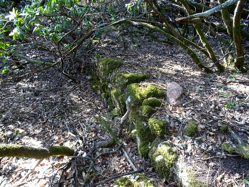 Vestiges de murets le long de l'ancien chemin d'exploitation avant la brèche