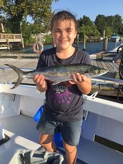 Spanish mackerel caught on a recent charter trip