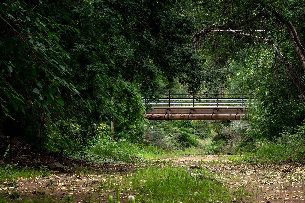 Highline Canal, Littleton CO