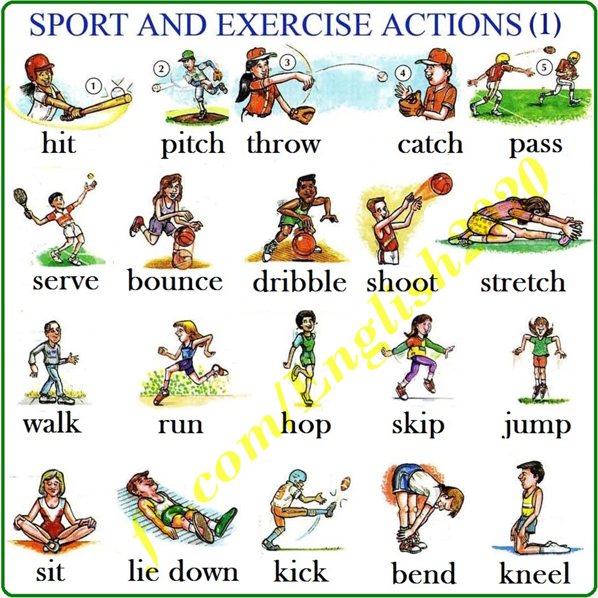 Action Verbs in English: Sport & Exercise 3