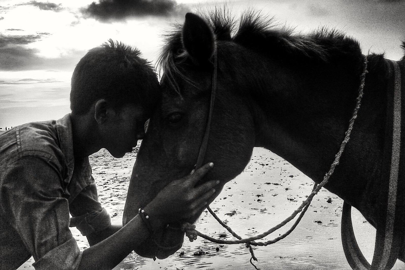 Bahadur (Horse)  & His little master Loves each other... trying to have a good time in the break period | by nayeemsiddiquee