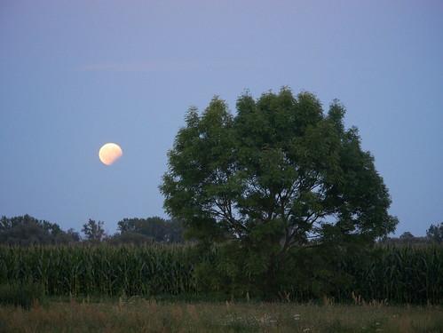 Ein angeknabberter Mond