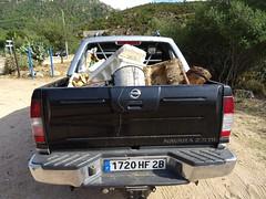Exemple de déchets collectés sur la route de Sainte-Lucie