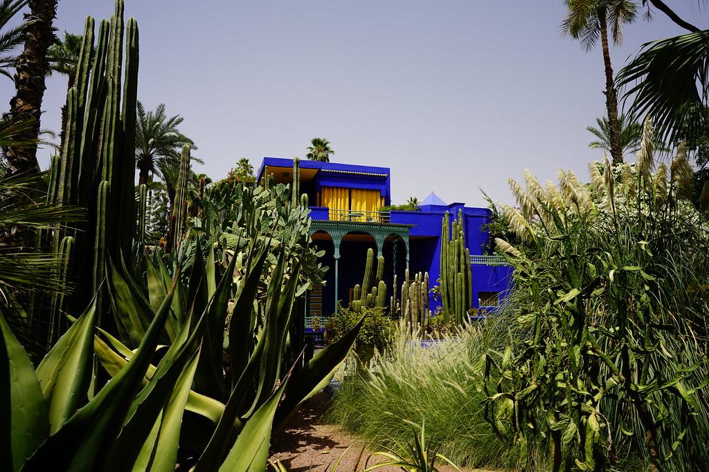 jardin majorelle marrakech by kimseokjong - Jardin Marrakech