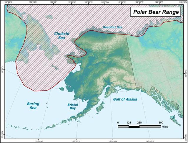 Mapa con la distribución de los osos polares en Alaska