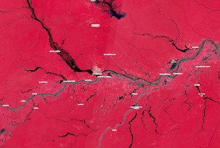An image from a Landsat satellite of Brazil, where the Amazon flows into the Rio Negro and Solimoes River. Satellite imagery like this will be coupled with epidemiological data, meteorological data, and Internet data streams to identify conditions that could potentially lead to disease outbreaks.