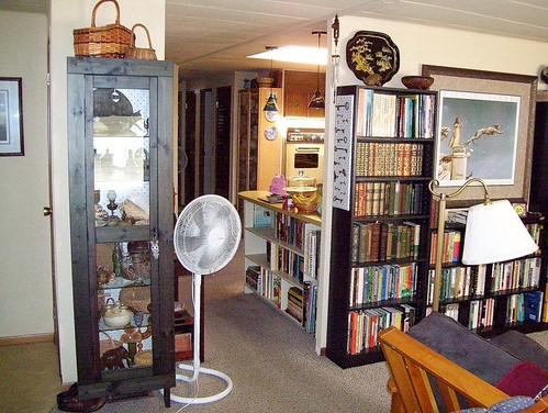 new shelves