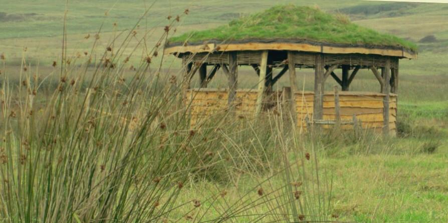 Gupton農場的賞鳥亭。(圖片提供:National Trust)