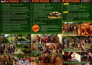 Elephant Jungle Sanctuary Chiang Mai Thailand Brochure 2