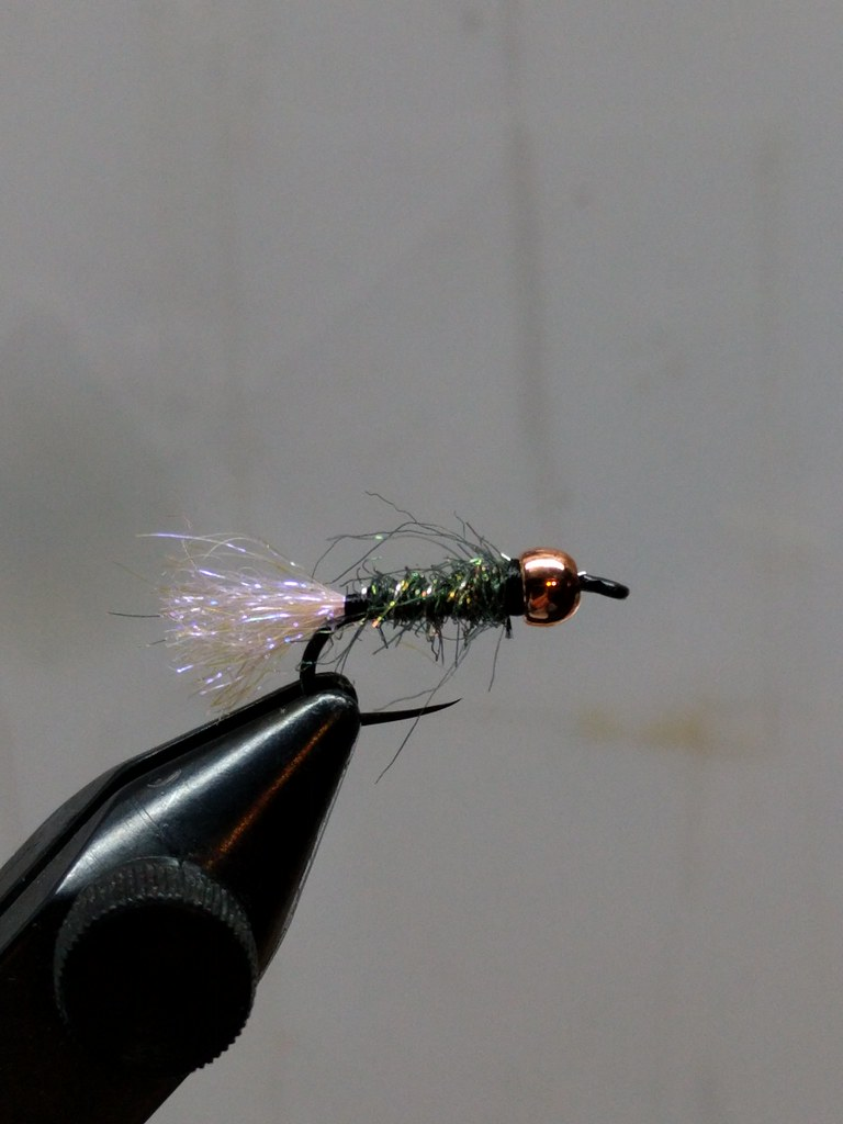 Ontario fly