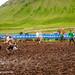 My_1st_impressions_mud football tornament bolungarvik-2