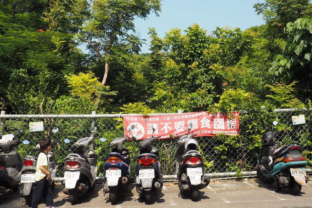 在壽山登山口機車停車處可見「請勿餵食獼猴」布條。攝影:李育琴。