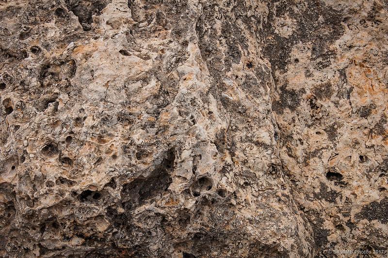 Roca fósil de la cima de la Mesa Roldán