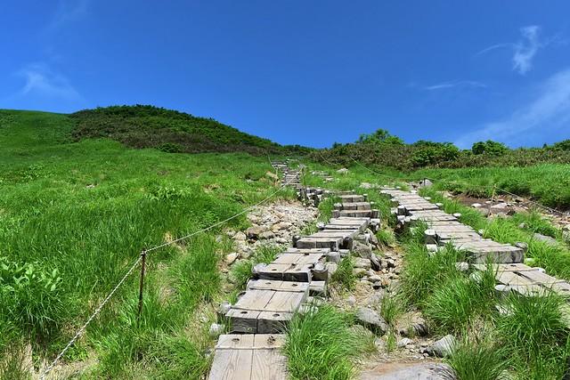 姥ヶ岳 木道の登山道