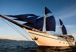 Samambaia barco de buceo liveaboard en Indonesia