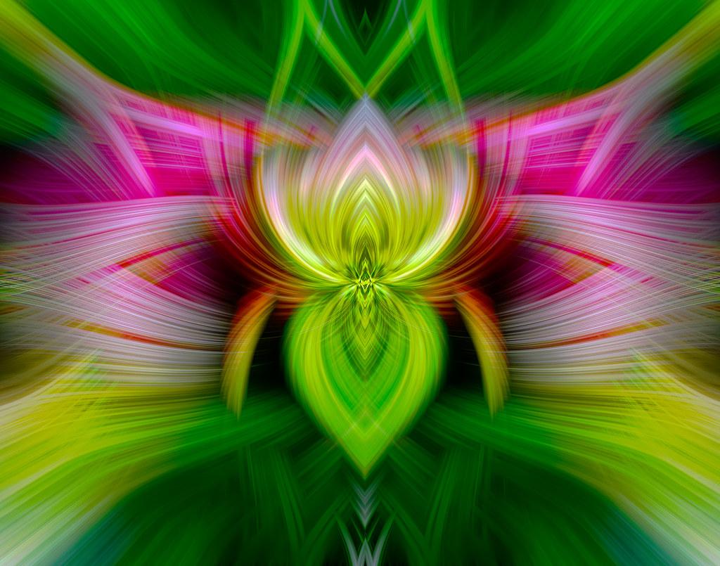 Spiritual twirl art 11 lotus flower symmetrical radi flickr spiritual twirl art 11 lotus flower by fotograzio mightylinksfo