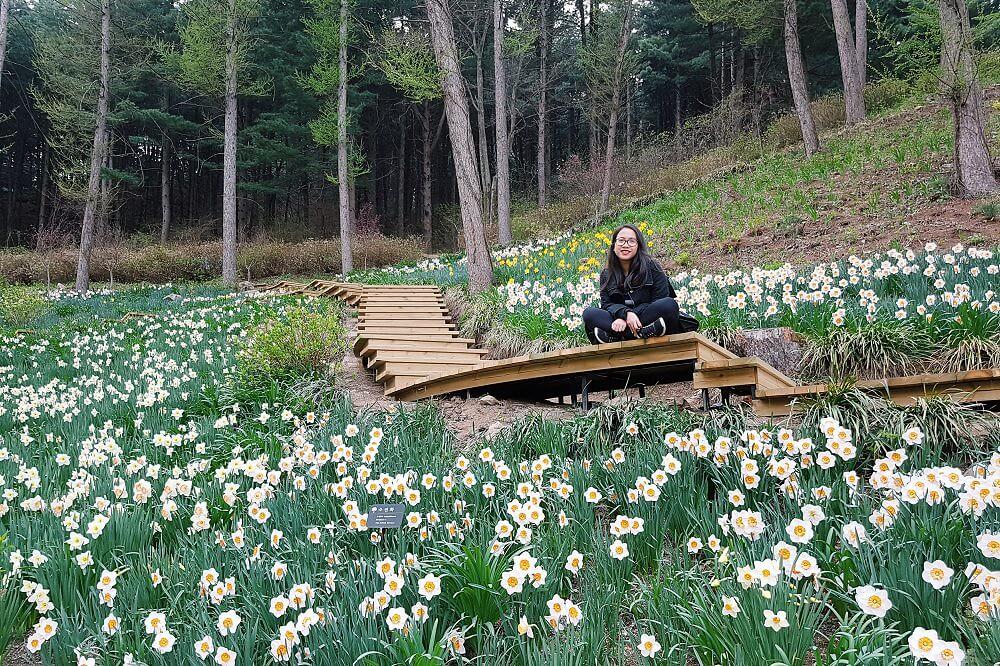 Garden of the Morning Calm South Korea