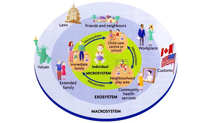 Teoría Ecológica de Bronfenbrenner. | © Berks y Roberts, 2009 (p. 28)