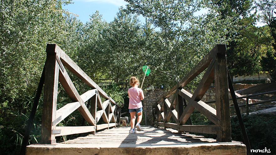 puente nacimiento río Tuéjar
