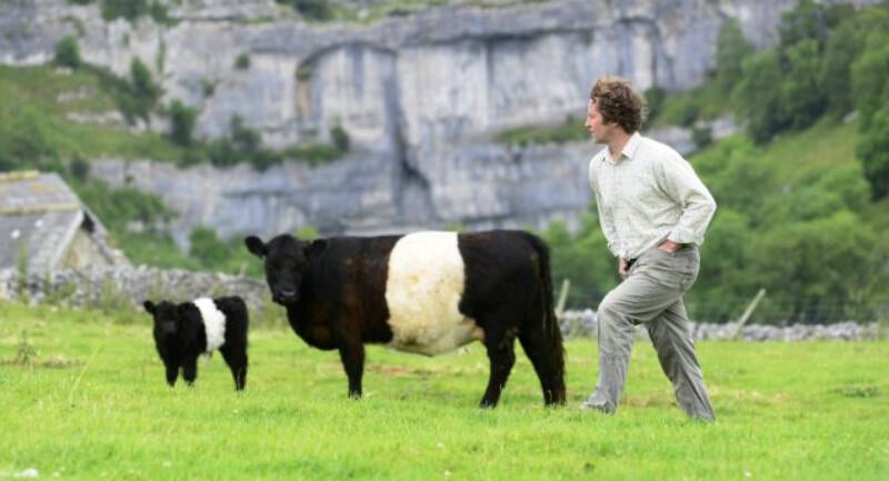 國民信託的佃戶Neil Heseltine和他的牛。圖片提供:National Trust