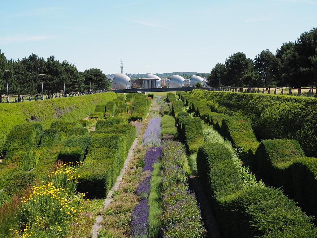 Beau ... Inner City Garden   By Birbee