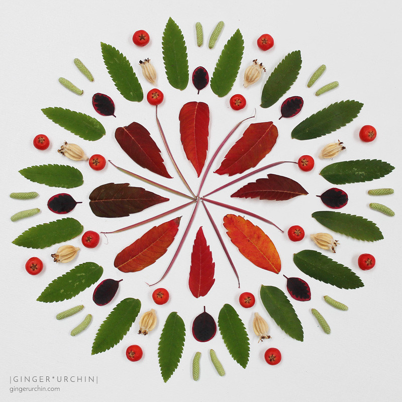 honouring the equinox with plant mandala