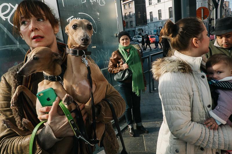 Brussels, Belgium | by f.d. walker
