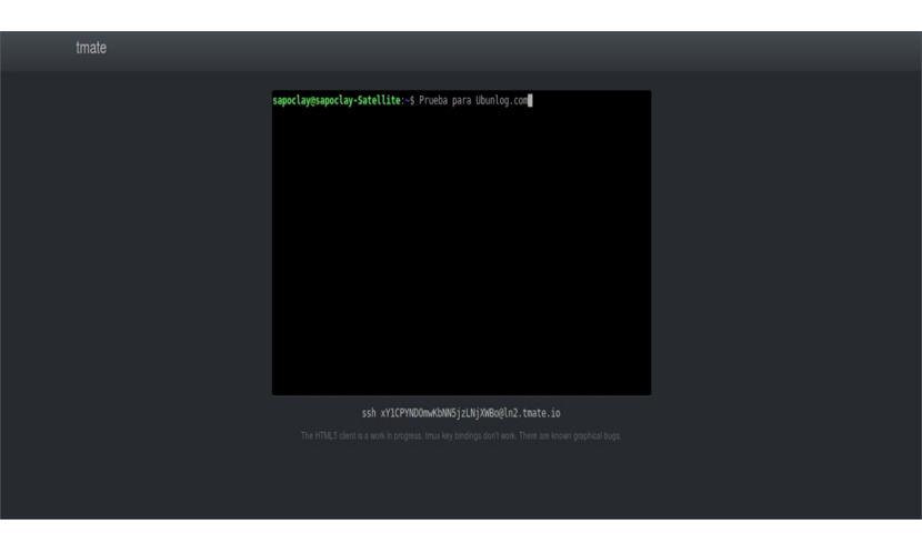 tmate-navegador-web