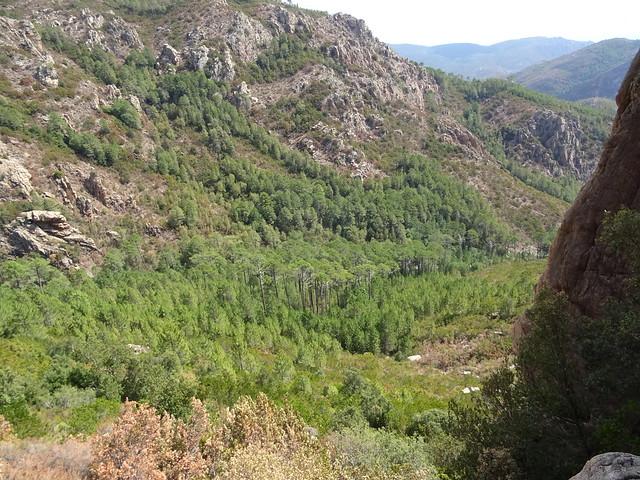 Le ravin du Ricu sous le piton rocheux 801m