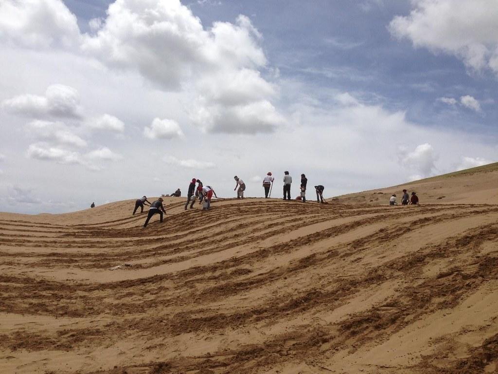 條播的方法更適合若爾蓋:先用鋤頭在沙地上划出一條條深溝,然後在拉出的沙溝裡,撒上攪拌好的草種和肥料,再蓋上沙子。圖片來源:扎瓊巴讓