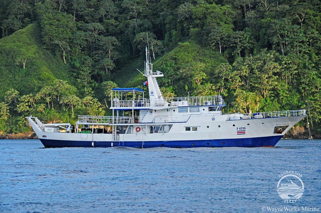 Okeanos Aggressor I Isla del Coco Buceo