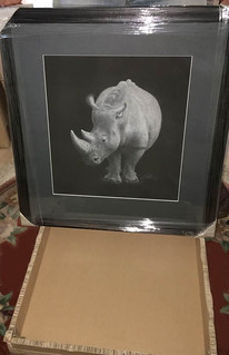 White Rhino | by Susan Shimeld - Nature in Fine Art