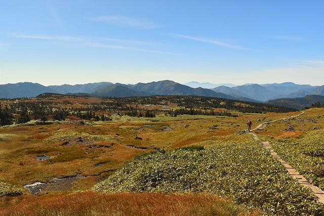 秋の苗場山登山 草紅葉広がる湿原風景