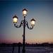 _light_&_night