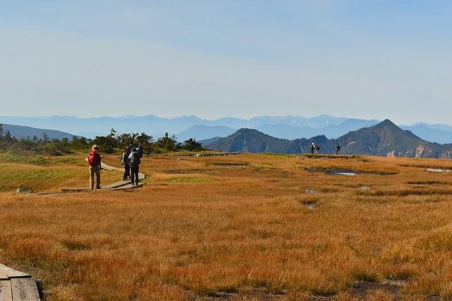 苗場山湿原から眺める北アルプス