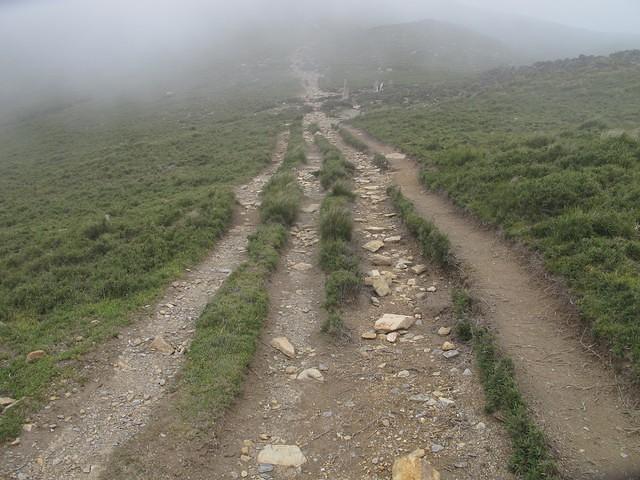 104年7月 嘉明湖步道問題 步道沖蝕與山友們的行走 長時間累積造成的「四代步道」。攝影:陳理德