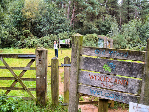 Entrance to Old Wood