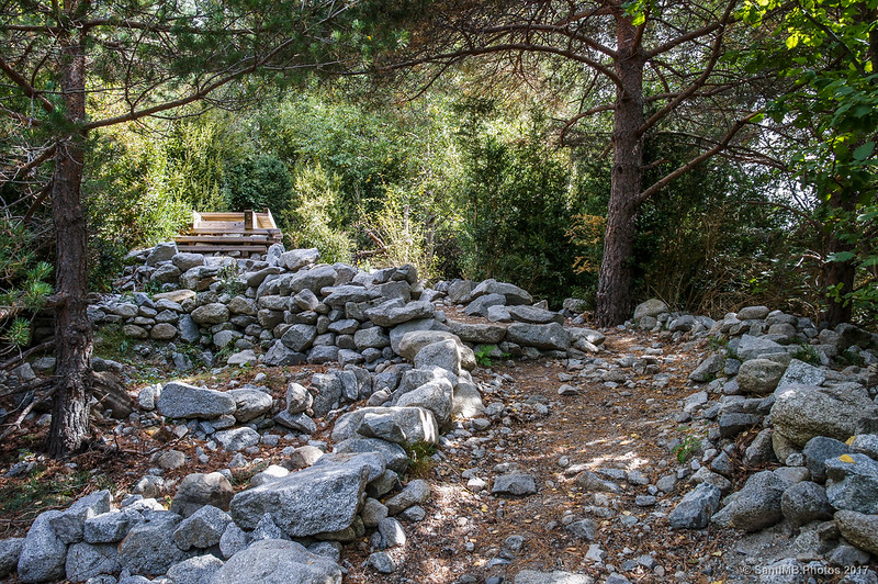 Pasarela de madera que cruza un arroyo en la Ruta de la Nutria