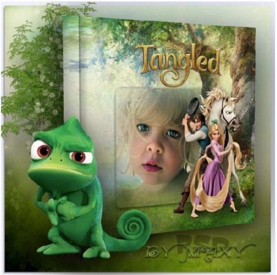 "Download the photobook layout ""Tangled"" – a complicated story"