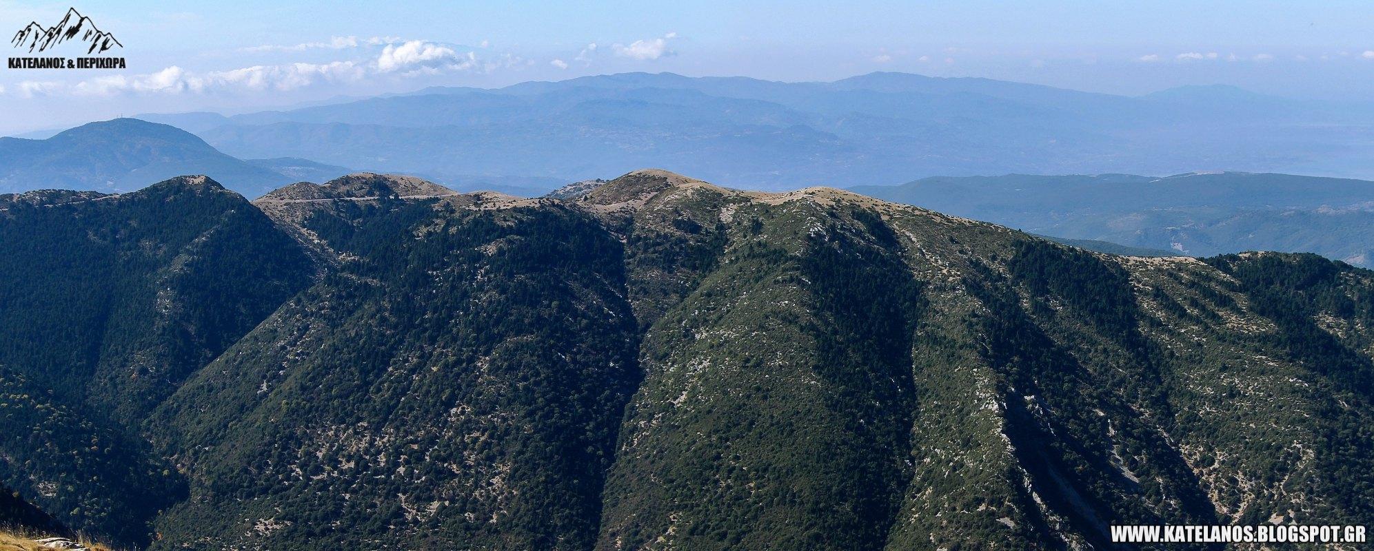 μαλαθουνα ορεινη ναυπακτία