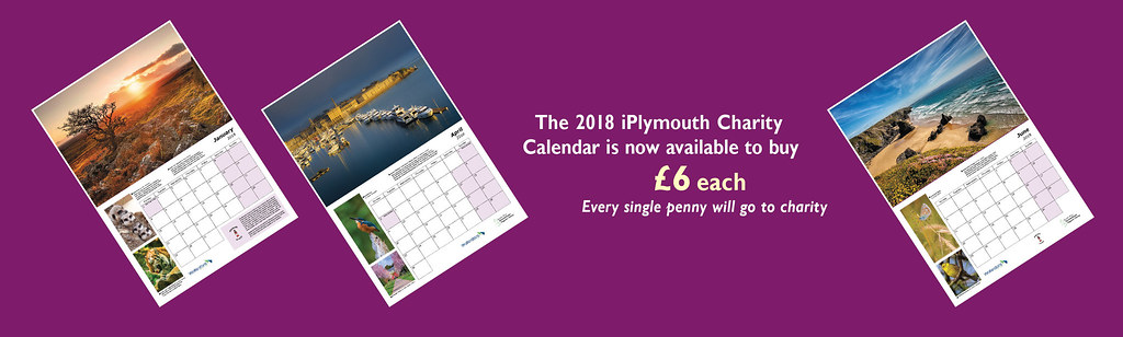 iplymouth flickr group charity calendar banner by jamiegaquinn