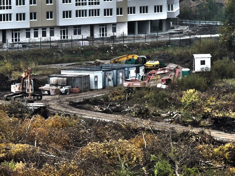 Парковая зона на Аксакова (Зорге). Вырубили березовую рощу под школу