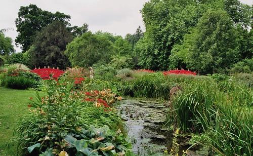 Jardin Japonais Parc De Wilton House Xviie Xixe Wiltsh