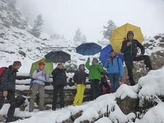 Hans und seine Wandertruppe im Schnee unterhalb der Silvesterscharte