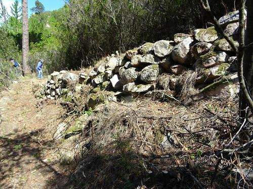 Le Chemin d'exploitation du Carciara en RG de la Figa Bona : vues du chemin entre le ruisseau de Peru et la Figa Bona après les travaux avec ses magnifiques soutènements