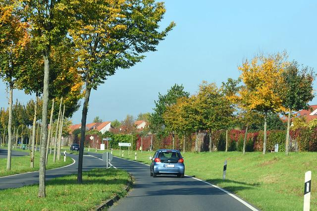 Herbstlich bunt gefärbt ... die Umgehungsstraße Mannheim-Seckenheim ... Foto: Brigitte Stolle 2017