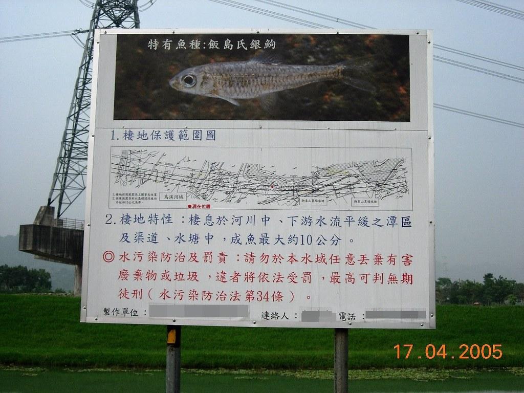 國道六號高速公路的工程單位在一旁設立告示牌,呼籲保護飯島氏銀鮈(即巴氏銀鮈,當時尚未發表),卻還是破壞了牠們的棲息地。圖片來源:鍾宸瑞。