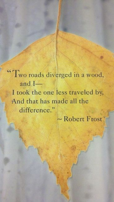 Life Quotes Two Roads Diverged In A Wood I Took The One Flickr